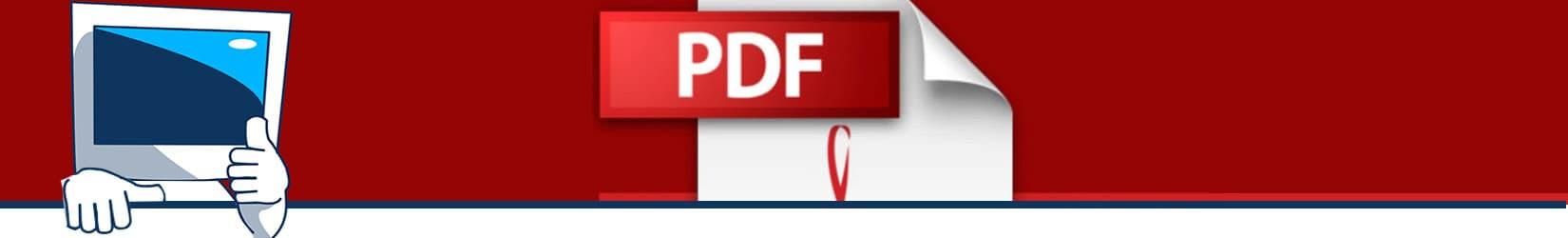 como abrir un pdf