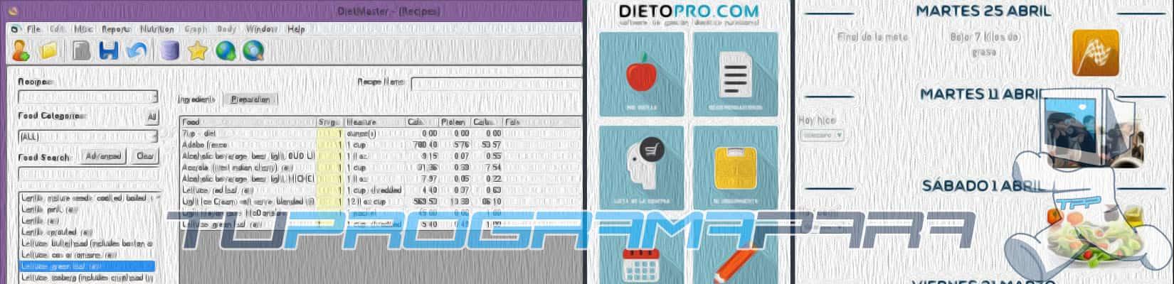 software nutricional